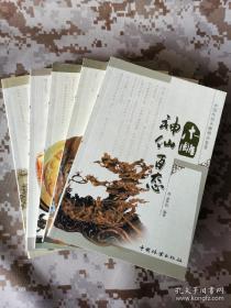 【中国传统木雕精品鉴赏丛书】四种合售 含《木雕达摩百态》《木雕弥勒百态》《木雕神仙百态》《木雕仕女百态》均为铜版纸彩色精印