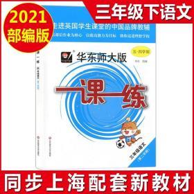 正版全新2021新版 一课一练三年级下 语文 3年级下册/第二学期 华东师大版 与上海小学教材课后同步配套练习册教辅书 上海寒假作业