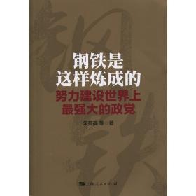 正版全新钢铁是这样炼成的 朱亮高 上海人民出版社 世纪出版