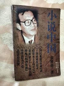 小说中国(1997一版一印)