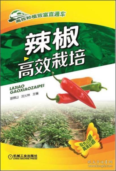 正版高效种植致富直通车:辣椒高效栽培