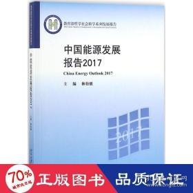 正版中国能源发展报告2017