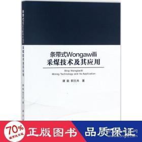 正版条带式Wongawilli采煤技术其应用