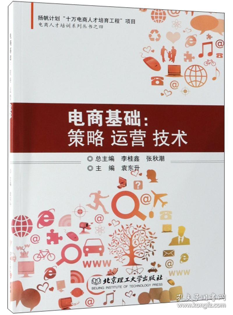 正版电商基础:策略运营技术/电商人才培训系列丛书