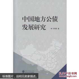 中国地方公债发展研究 付传明 武汉大学出版社