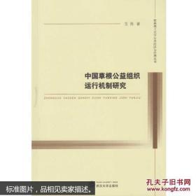 中国草根公益组织运行机制研究 玉苗 武汉大学出版社