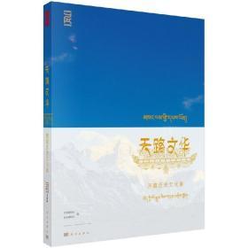 正版  天路文华:西藏历史文化展 科学出版社 首都博物馆 西藏博物馆