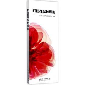 鲜切花品种图册昆明国际花卉拍卖交易中心9787519809386中国电力出版社2017-07-01体育