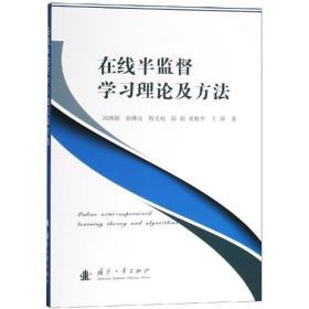 正版在线半监督学习理论及方法