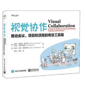 正版视觉协作:推动会议、项目和流程的有效工具箱 项目管理 (丹