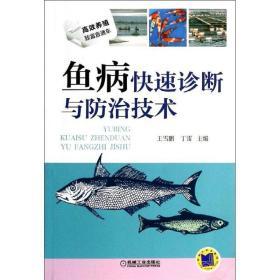 正版高效养殖致富直通车:鱼病快速诊断与防治技术