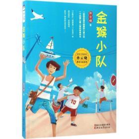 正版金猴小队(孙云晓教育小说系列)