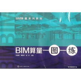正版BIM算量一图一练