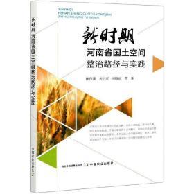 正版新时期河南省国土空间整治路径与实践