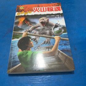 黑森林国际畅销书系—极限探险—火山惊魂