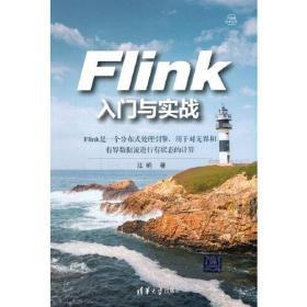 Flink入门与实战/大数据技术丛书