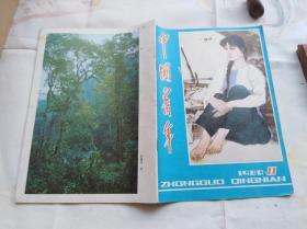 中国青年1980年第11期,封面林墉美女画,杨述同志诗抄,朱伟在爱的激流中,读曹操短歌行等