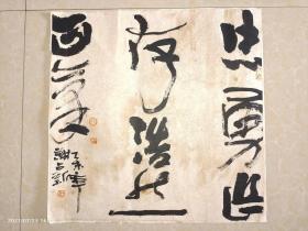 浙江乐清籍自由书画家:谢占新 规格50X50
