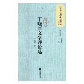 丁晓原文学评论选 丁晓原著 9787559408129
