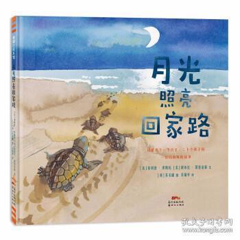 月光照亮回家路从生活中发现问题3-6岁蒲蒲兰绘本