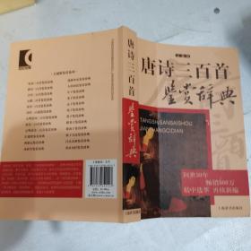 唐诗三百首鉴赏辞典 : 文通版