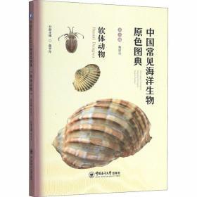 正版中国常见海洋生物原色图典——软体动物
