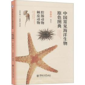 正版中国常见海洋生物原色图典——腔肠动物 棘皮动物