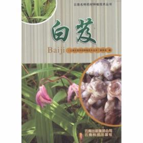 正版云南名特药材种植技术丛书:白芨