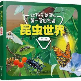 正版让孩子着迷的第一堂自然课 昆虫世界