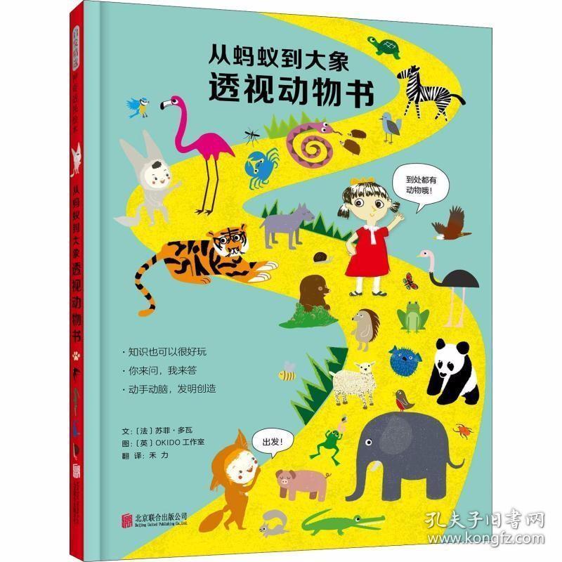 正版从蚂蚁到大象透视动物书——(启发童书馆出品)