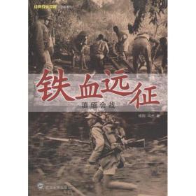正版铁血远征:滇缅会战