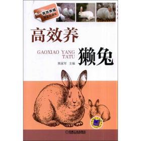 正版高效养殖致富直通车:高效养獭兔(双色印刷)