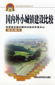 国内外小城镇建设比较 吴远彬 主编 9787802331440