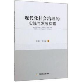 现在化社会治理的实践与发展探索 王延光,王文建 9787109267152