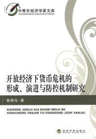 中青年经济学家文库:开放经济下货币危机的形成、演进与防控机制
