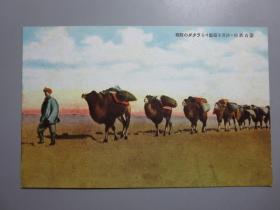 民国彩色明信片—蒙古风俗.沙漠中的骆驼商队