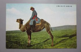 民国彩色明信片—蒙古风俗.骑骆驼的老人