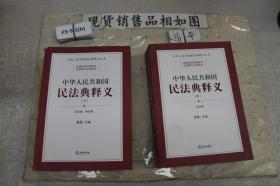 中华人民共和国民法典释义 上中(2本合售)