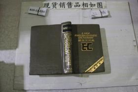 新英汉词典增补本~