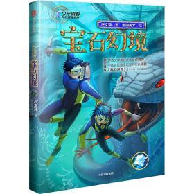 宝石幻境(少年原野科幻探险系列)