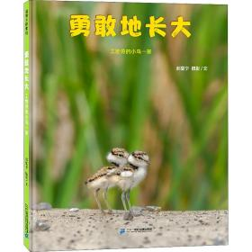 勇敢地长大 在故事中理解环保理念和生态文明对自然的影响