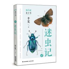 虫子书——迷虫记 童话故事 杨鸿雁