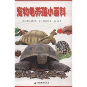 宠物龟养殖小百科