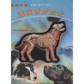 有趣的透视立体书:透视奇妙的犬