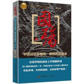 国殇(第5部):中国远征军缅甸、滇西抗战秘录