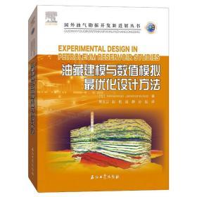 油藏建模与数值模拟最优化设计方法