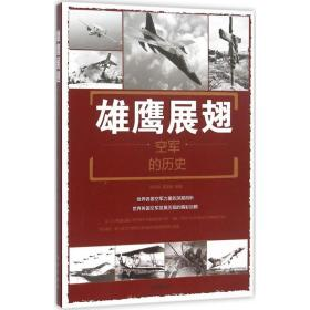 雄鹰展翅:空军的历史