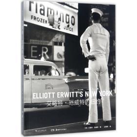 艾略特·厄威特的纽约