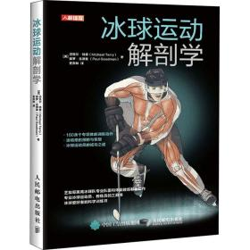 冰球运动解剖学