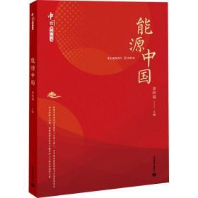 能源中国(中国系列丛书)
